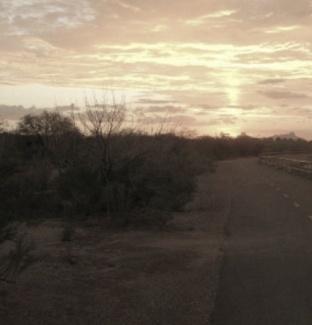 Rillito Park Path